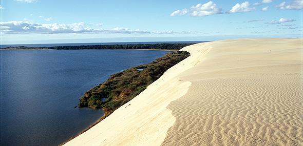 Neringa dune sulla costa