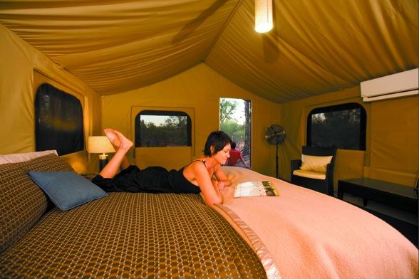 Wilderness Lodge 14906-256