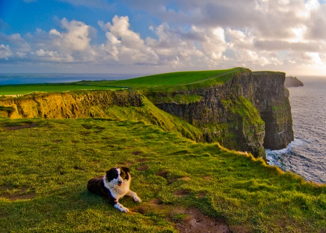 Contea di Clare - Cliffs of Moher5