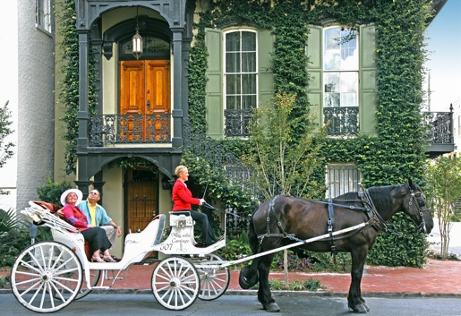 Savannah, giro in carrozza