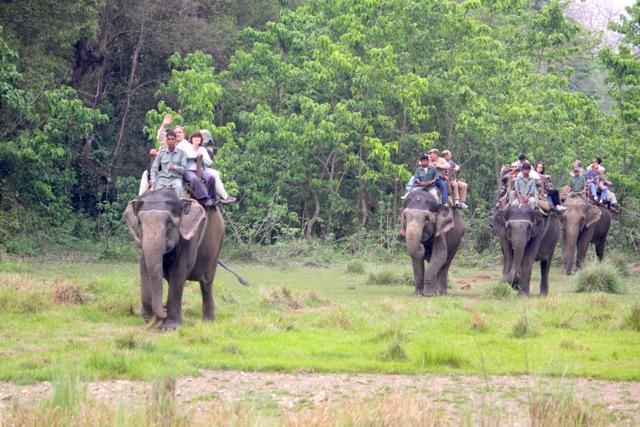 Parco di Chitwan