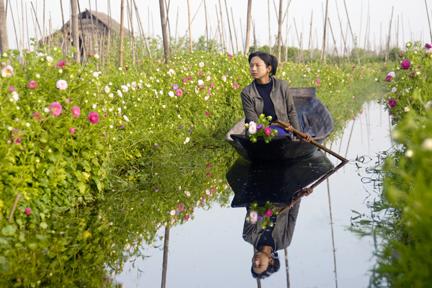 Donne birmane che si spostano tra colture galleggianti