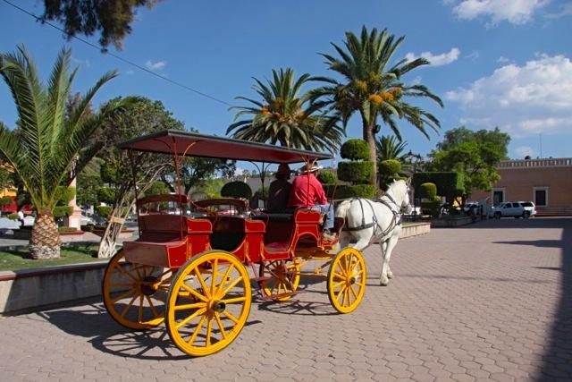 La carrozza che porta a spasso i turisti