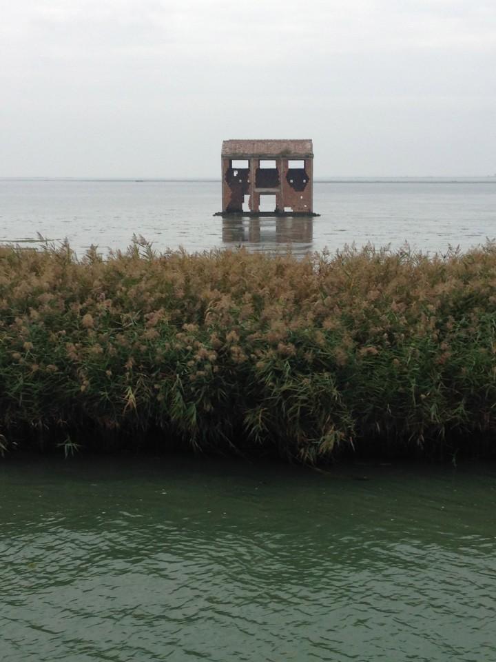 Dall'acqua emerge quanto resta dei vecchi magazzini di riso