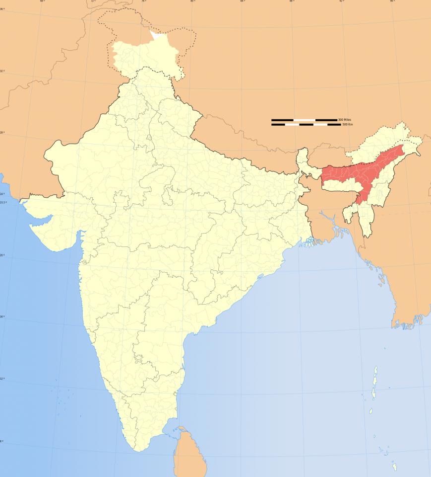 L'orecchia dell'India, dove si trova l'Assam