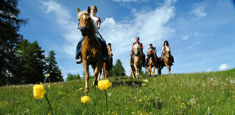 Lunghe passeggiate a cavallo