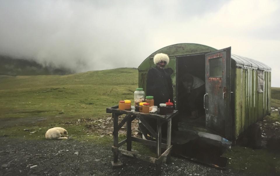 Un pastore nomade