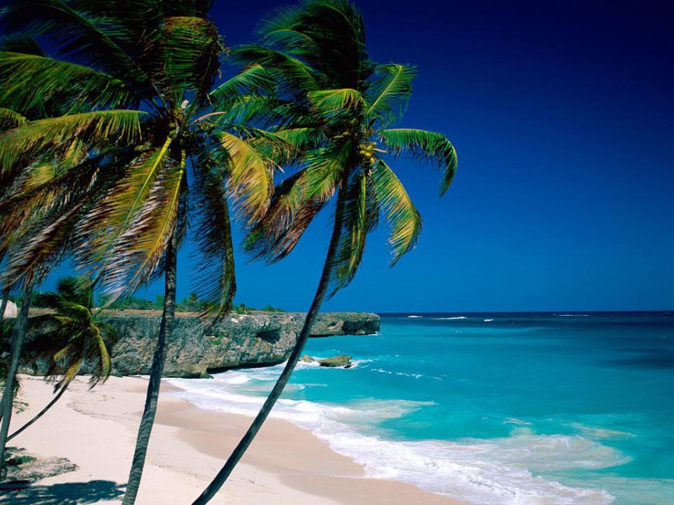 Classica spiaggia alle Barbados