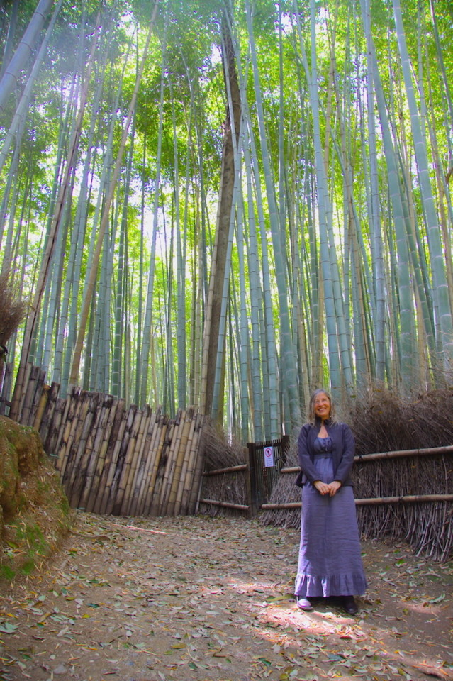 Nella foresta di bambù di Arashiyama