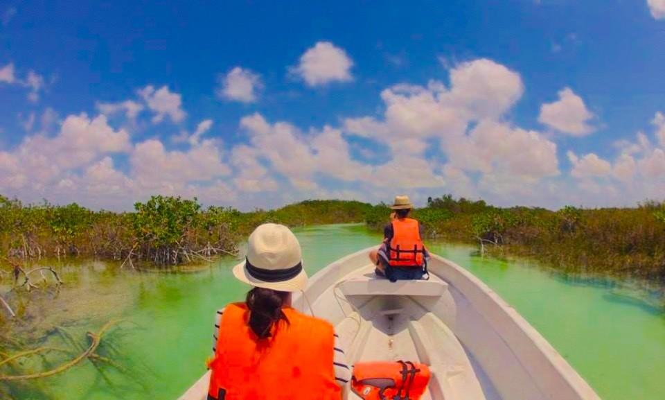 Nelle acque lagunari color giada