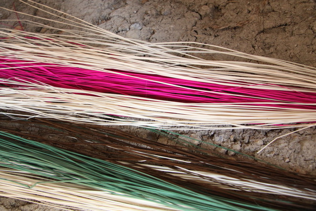 La paglia usata e poi suddivisa per i sombreri più fini in sei fili diversi
