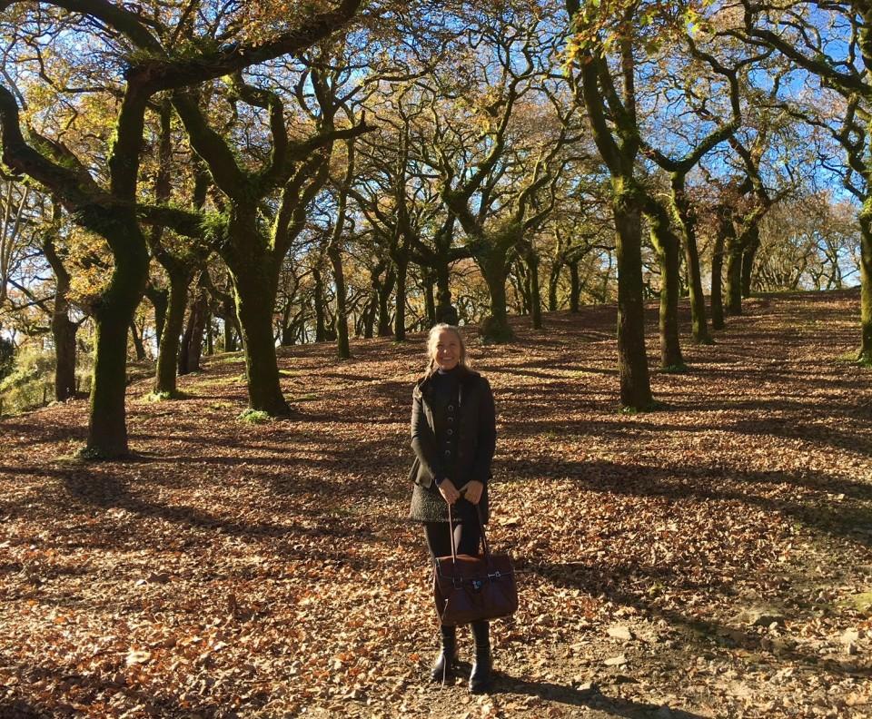 Nei boschi del Parco Alameda