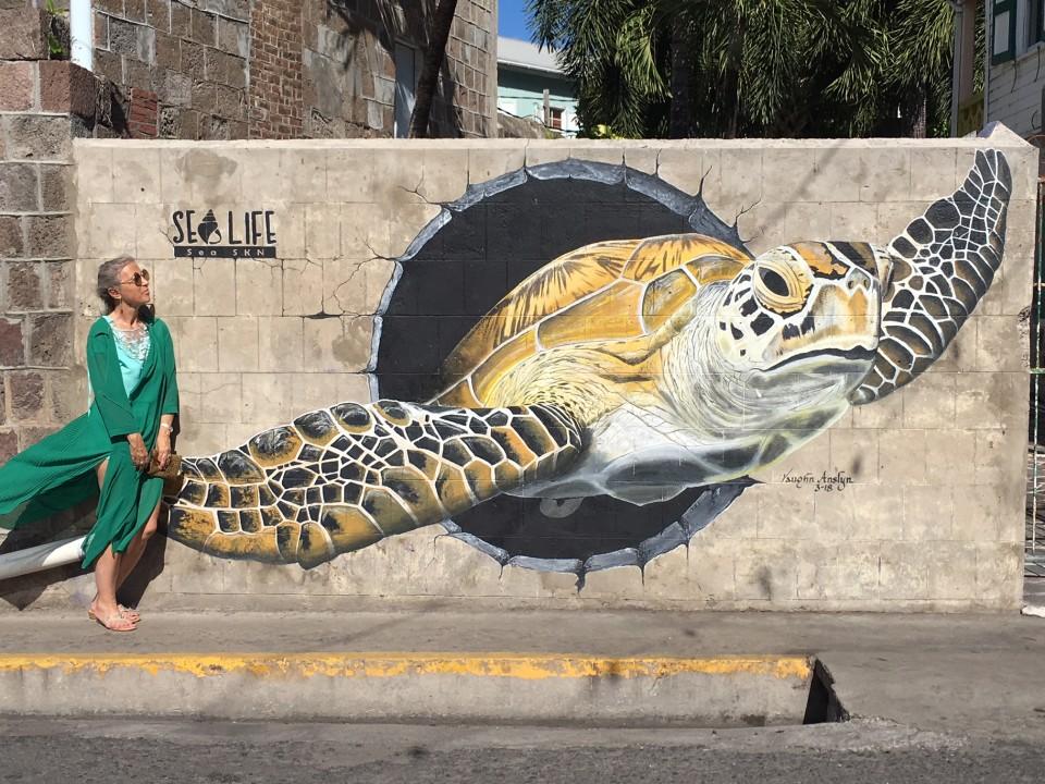 A St Kitts & Nevis c'è molta attenzione alle tartarughe
