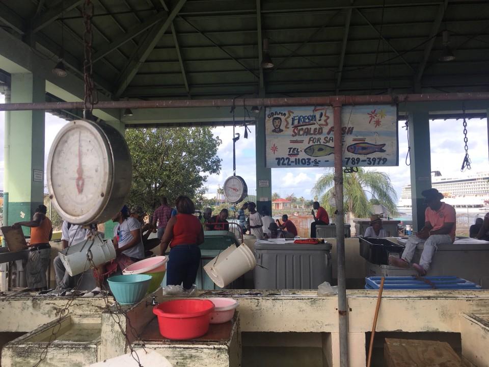 Il mercato pubblico del pesce a St Johns