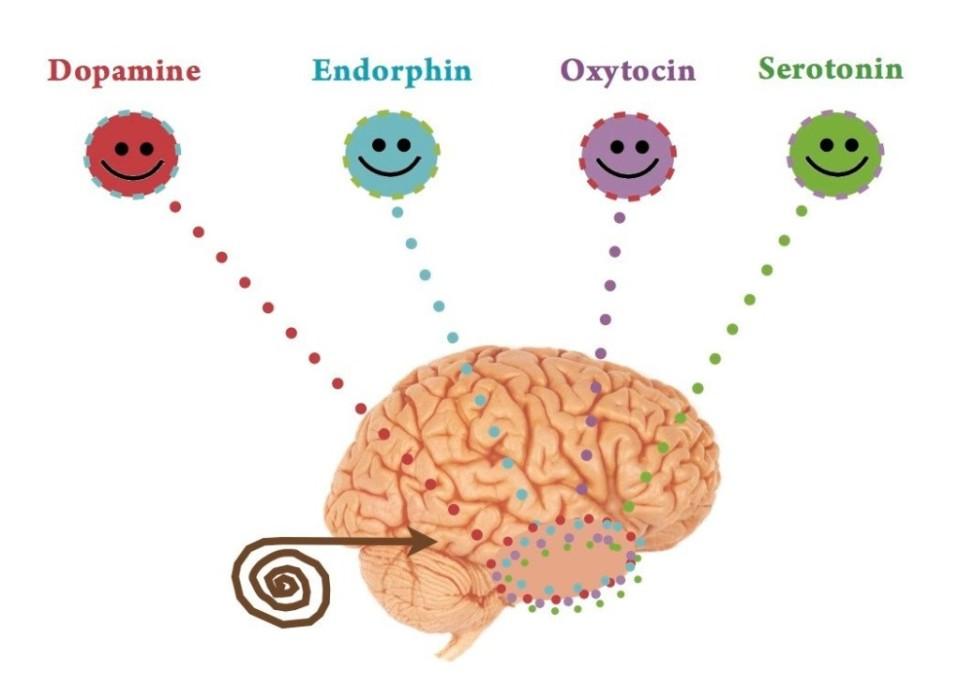 La Serotonina è uno degli ormoni della felicità