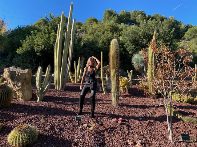 Tra i cactus